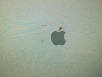 Appleマークがかけて起動しない